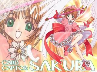 yoro_sakura